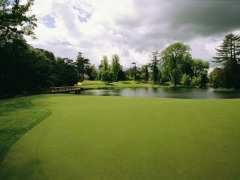 Cartonhouse-golf